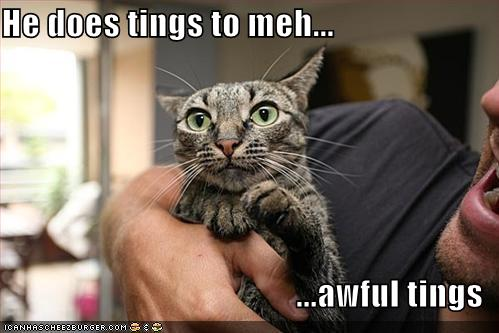 LOLCats... Awful things!