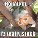 No Laugh I'z really stuck!