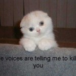 LOLCats, The Voices