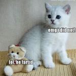 LOLCats, lol he fart'd!
