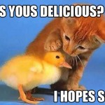 LOLCats Is You Delicious?