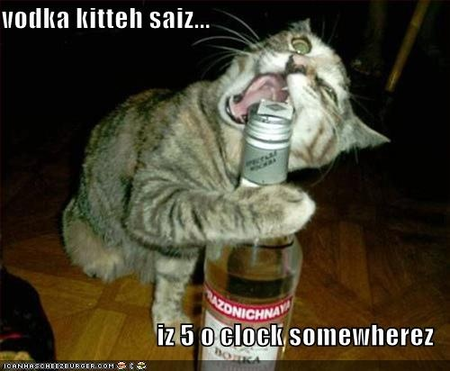 LOLCats Best Of The Week, Meow!