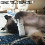 LOLCats, Best Of The Month!